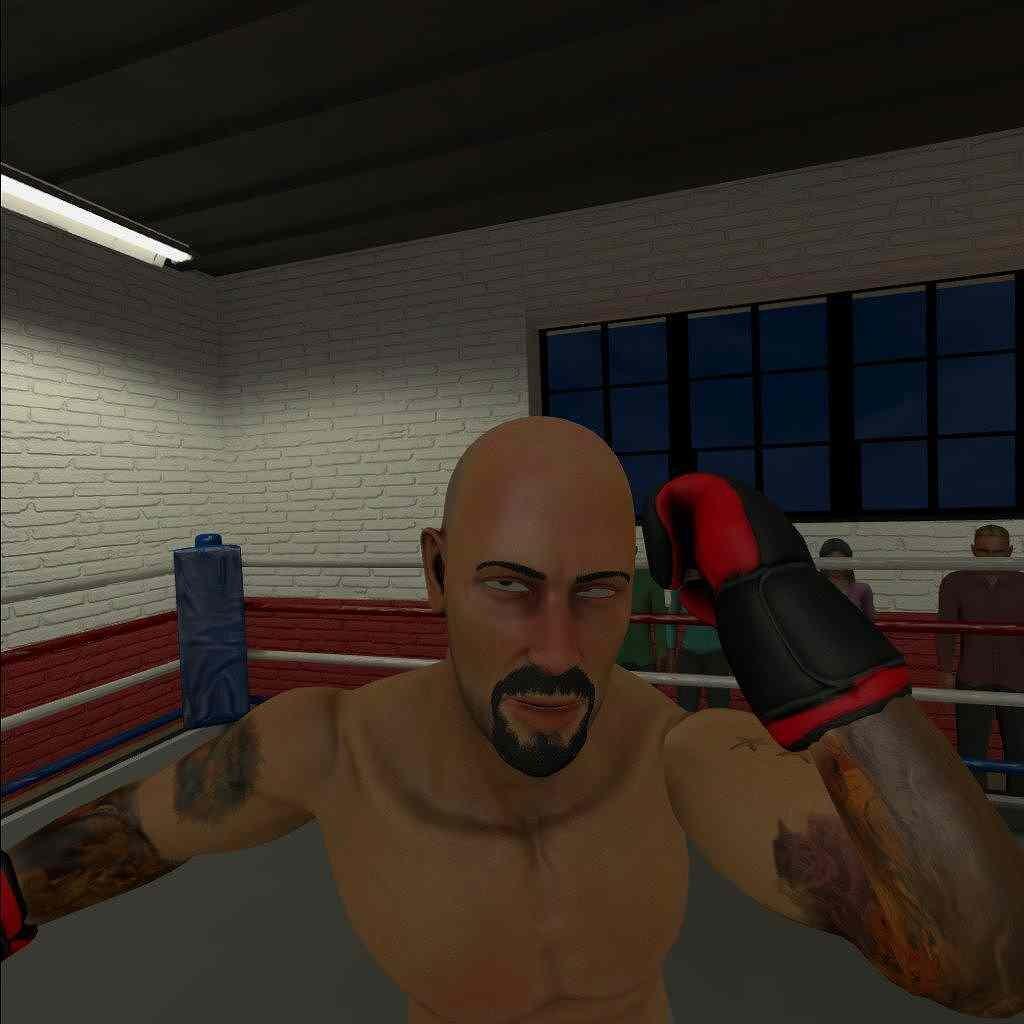 The Thrill of the Fight レビュー 移動なし、ひたすらパンチできるのが嬉しい!!